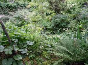 Inside the Jardin Alpin
