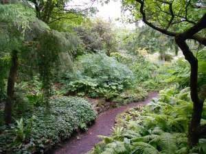 Two gardins in the jardin alpin split by a path
